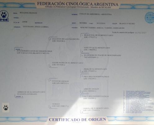 Pedigree de Emilce de Amigobull Argentina (Madre del cachorro)